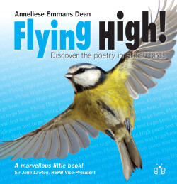 Flying High Cover HB.indd